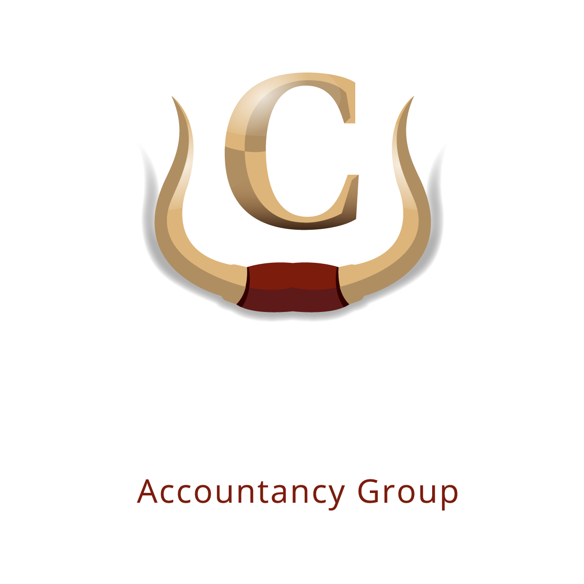 Casillas Accountancy Group
